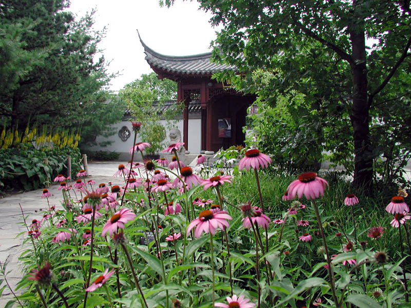Chinese garden gate - How to create a chinese garden ...