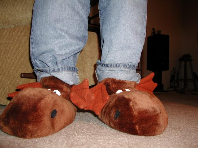 57890cd43833f0 Previous  leeks Next  motorcycle boots · moose slippers